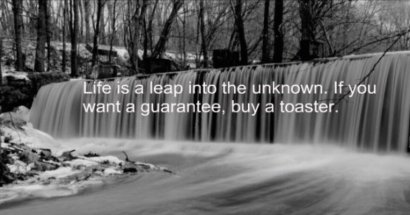 life_is_a_leap_into_the_unknown-227652
