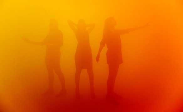 C0124487 States of Mind: Ann Veronica Janssens.